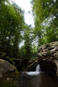 Mandala Springs Waterfall